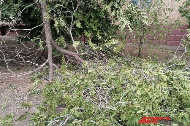 В Оренбургской области объявлено штормовое предупреждение из-за шквалистого ветра.