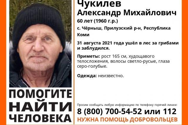 60-летний мужчина из села Чёрныш пропал 31 августа.