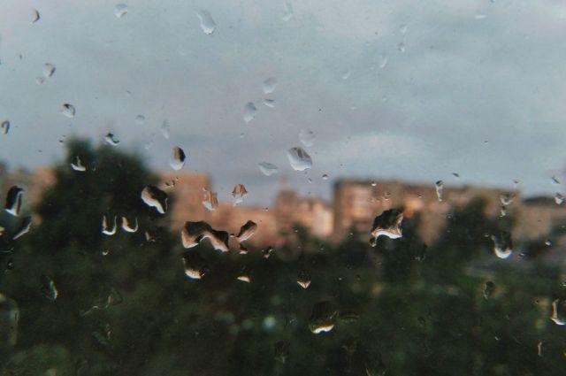 Неделя в Оренбургской области начнется с дождей.