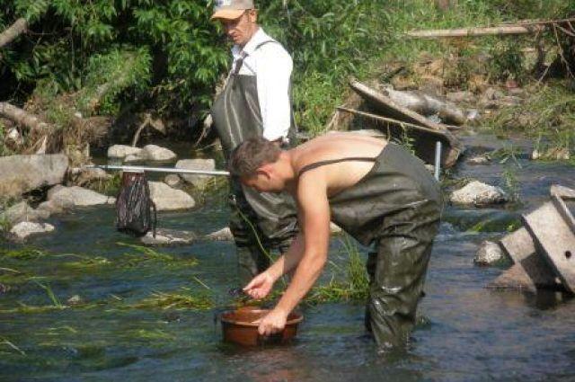 Специалисты НИИ водного хозяйства знают, как реабилитировать водоёмы, но их рекомендации зачастую идут вразрез с коммерческими интересами.