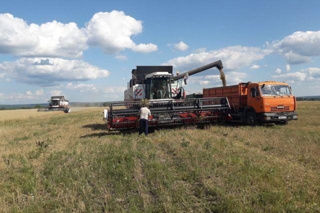 Сельское хозяйство - главное для округа.