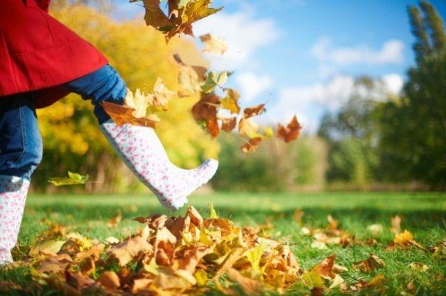 Стало известно, как взбодриться осенью.