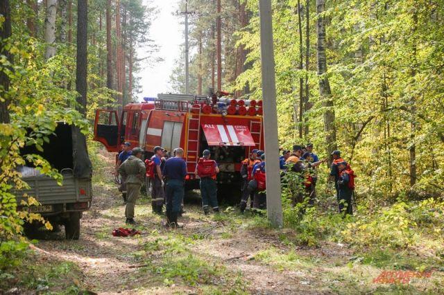 Борьба с пожарами. Регионам выделят по 8 млрд рублей на лесоохрану