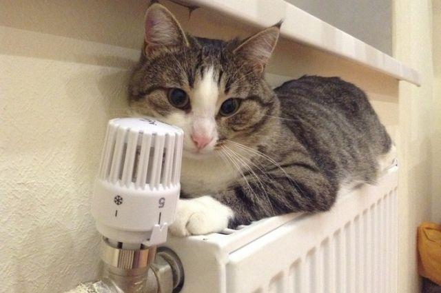 Тепло в квартирах красноярцев могут дать уже на этой неделе.