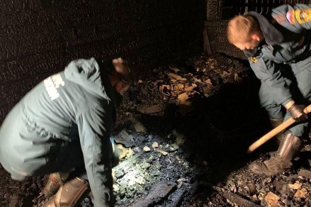 Причина пожара и гибели детей устанавливается экспертами испытательной пожарной лаборатории МЧС России.