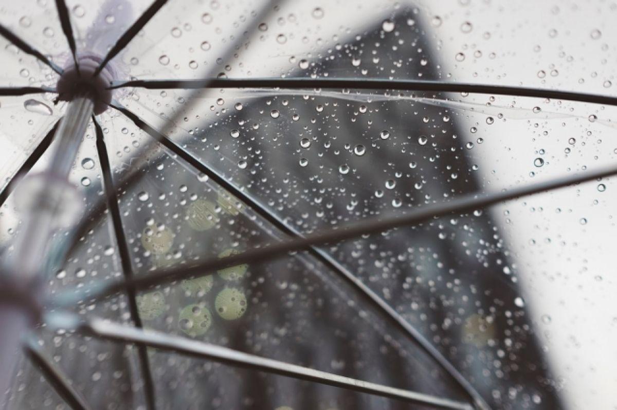 Предстоящая рабочая неделя в Воронеже будет прохладной и дождливой