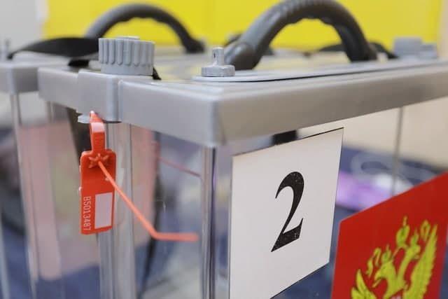 Миссия наблюдателей СНГ не выявила серьезных нарушений на выборах в Госдуму