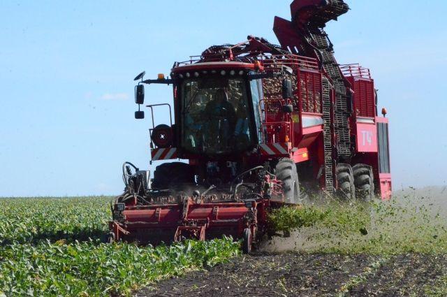 Современный комбайн на сборе урожая свеклы