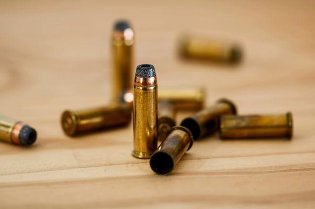 Политик предложил меры по борьбе со стрельбой в учебных заведениях