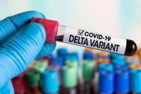 Врачи рассказали, как у пациентов развивается Дельта-коронавирус
