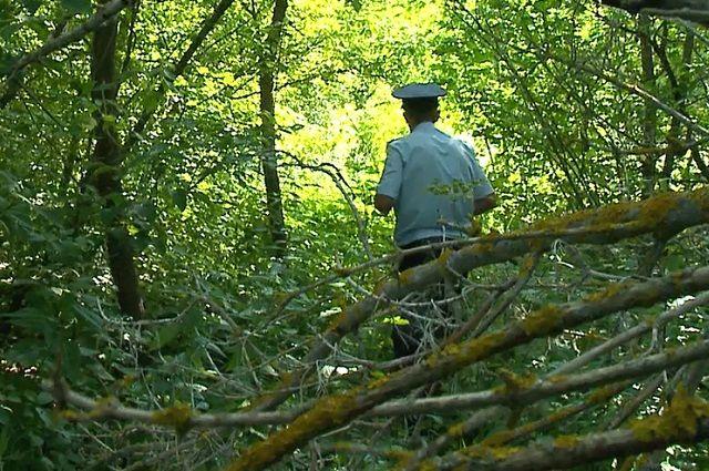 Мужчина и женщина пошли по грибы. Ничего не нашли, но потерялись