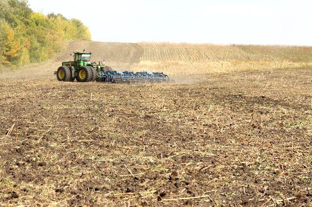 В итоге всех реформ большинство земельных угодий стали важным рыночным ресурсом.