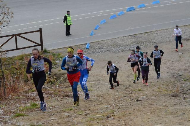 В Мурманской области забег прошёл в семи муниципалитетах.