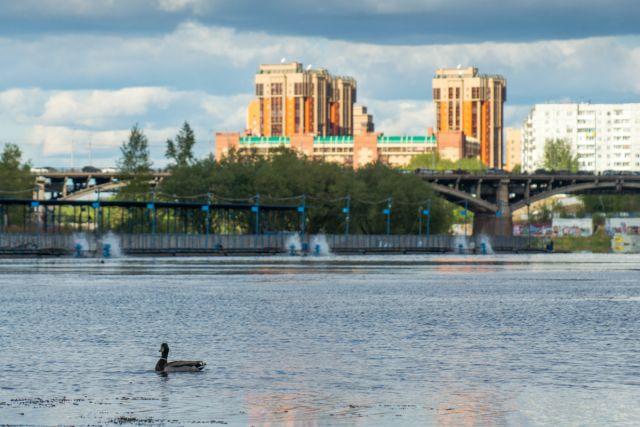 38% жителей считают Красноярск лучшим для карьеры, 32% не видят перспектив