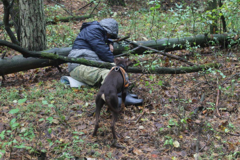 Собака находит человека, который играл роль пропавшего