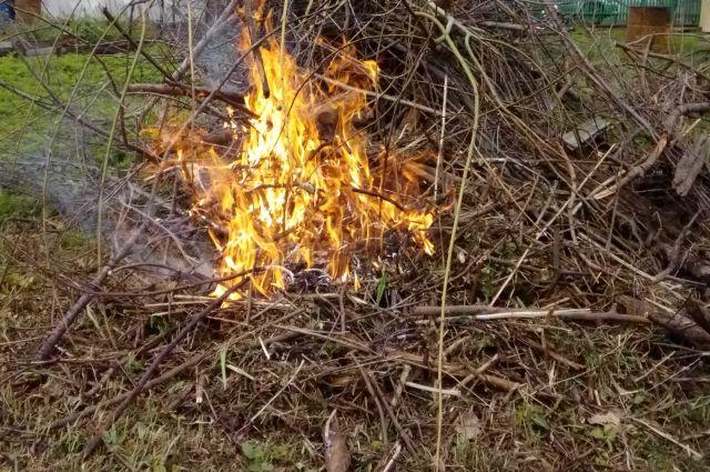 Дым отчизны: сжигание сухой травы и листвы грозит не только штрафами