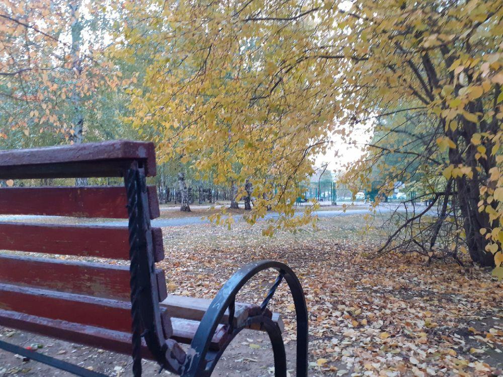 «Вприпрыжку осень побежала». Любимая Тюмень - 2021.