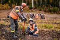3000 молодых елей высадили горняки вместе с экологами и представителями лесхоза.