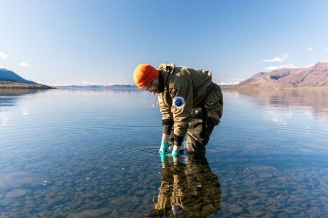 Большая норильская экспедиция завершила полевые работы в арктической зоне.