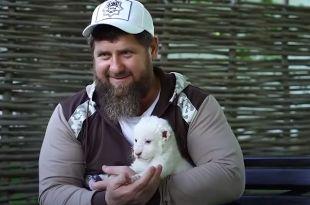 Глава Чечни явно любит кошек - и домашних, и диких.