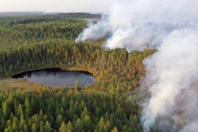 Горящие леса в районе Сямозера в Пряжинском районе Карелии в 2021 г.