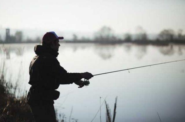 Рыбка стала «золотой». Какие штрафы и компенсации заплатят браконьеры.