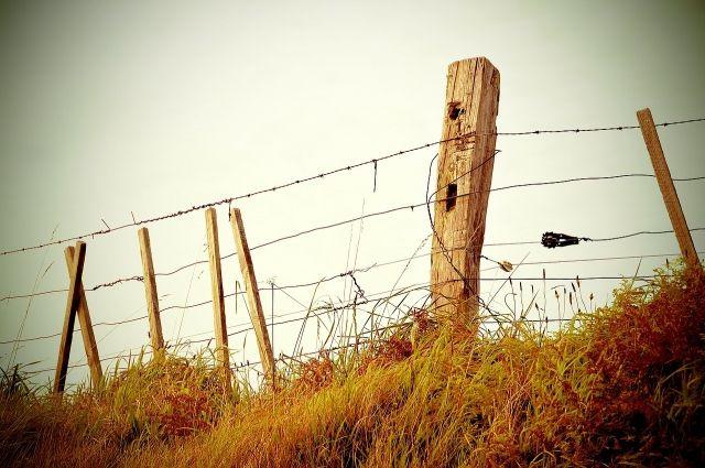 Гржданин Узбекистана незаконно 15 раз пересекал границу РФ.