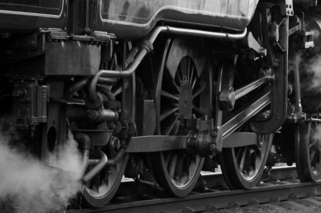 Подозреваемую в убийстве девочки в Вологде обнаружили в поезде
