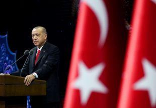 Эрдоган поручил выслать из Турции 10 иностранных дипломатов