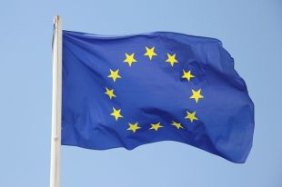 Евросоюз планирует возобновить работу дипмиссии в Кабуле в течение месяца